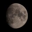Luna gibbosa